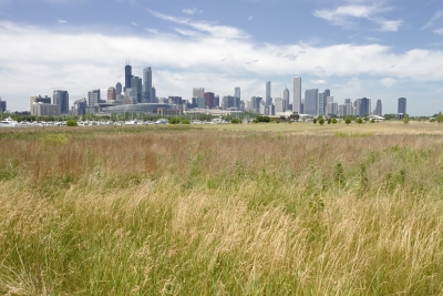 A skyline of the city of Chicago with the prairie in the foreground.